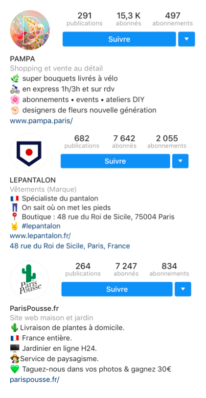biographie instagram emojis